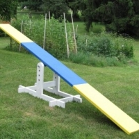 How to Train a Dog on the Teeter Totter