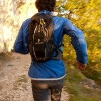 Is Fitness Important for Survival?