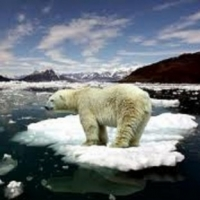 Is Global Warming Melting Polar Ice Caps?