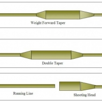 Learn to Fly Fish    -    The Fly Fishing Line