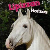 Lipizzaner Drawing Horses: What's And the How's?