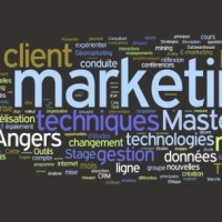 Master the Fundamentals Of Marketing Online