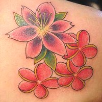 Meaning of Cherry Blossom Tattoos
