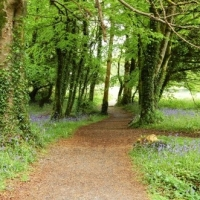 Must See Sites Along the Ring Of Kerry, Ireland