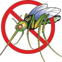 Natural Mosquito And Flea Repellent for Your Yard