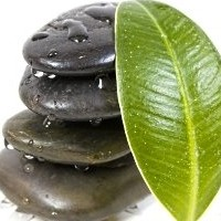 Natural Supplements Anxiety Treatment