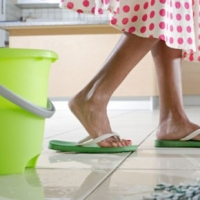 Nesting Fever, the Obsession to Clean