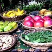 Organic Foods And Superfoods   -   Why Now?