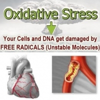 Oxidative Stress and Anti Aging