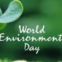 Par Excellence Displayed By Mumbaikars: World Environment Day