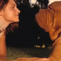 Relationships Between Man And Women – Dogs And Man?