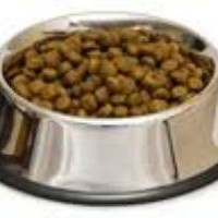 Research Dog Food Ingredients  -  A Consumer Fight Back
