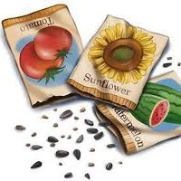 Seed Starting Packet