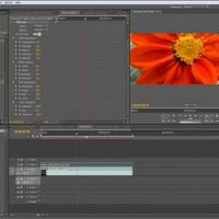 Software for Editing Videos