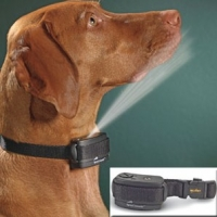 Spray Bark Collars – Safest Way To Lessen Nuisance Barking