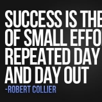 Success = Small Efforts Done Daily