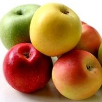Super Foods for A Healthy Pregnancy Diet And Nutrition Plan