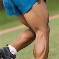 The Best Leg Workout For Building Muscle