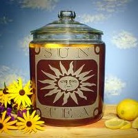 The Best Tea is Sun Tea And What I Mean is Green Tea Brewed Right In the Sun
