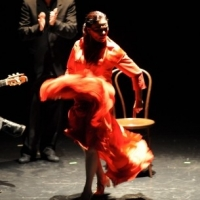 The History Of the Flamenco Dress