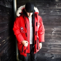 The Incomparable Canada Goose