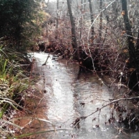 The Pleasures And Perils Of Living Near Water 1
