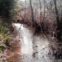 The Pleasures And Perils Of Living Near Water 2