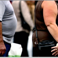There Are No Clear Cut Reasons for the Modern Obesity Epidemic