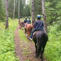 Tips for Horse Riding With Other Riders
