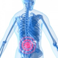 Understanding the Causes Of Back Pain