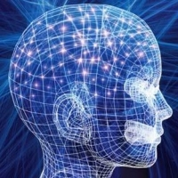 Understanding the Complex Processes Of the Mind