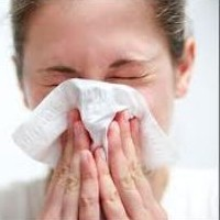 Using Peppermint Oil As A Nasal Congestion Remedy