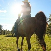 Wet Saddle Pads, Long Rides, Concentrated Training