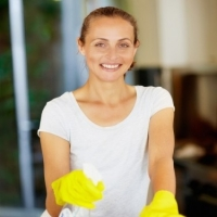 What\'s so Great About Utilizing Domestic Cleaners