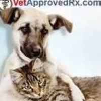 Where to Buy Pet Medications