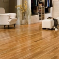 Why Laminate Flooring is Becoming the Perfect Substitute for Wood?