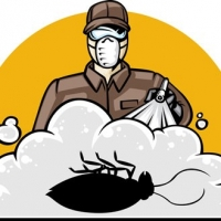 Why Should You Hire A Professional Pest Control Company?