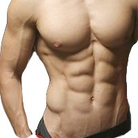 Why You Need to Diet If You Want A Six Pack