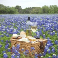 Wine Cellars In Dallas, Tx: Fill Your Cellar With Great Local Wines