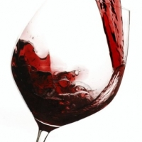 Wine Cooler Reviews  -  Why You Should Keep Your Wine Correctly
