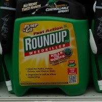World\'s Most Popular Weed Killer Found to Significantly Increase Risk Of Blood Cancer